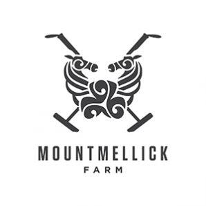 MountMellick_web