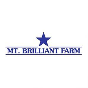 Mt. Brilliant_web