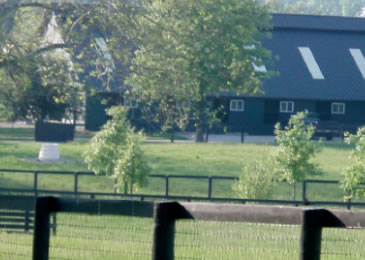Juddmonte Farms