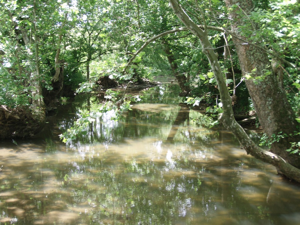 Boone Creek