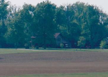 Mahan Farms