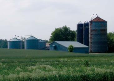 Walnut Lawn Farm